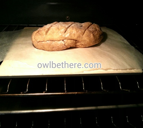 I made a loaf, rather than a ball (Note the tray of water under the baking stone.. Hard to see, I know)